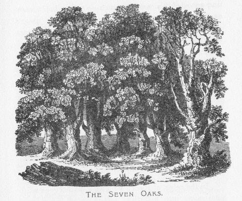 "Charles Essenhigh Corke's fanciful 1900 drawing of the ""original"" oaks"